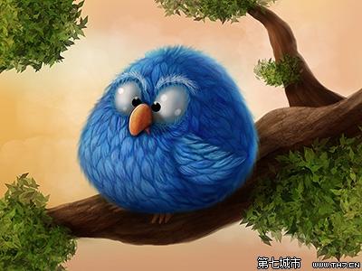 可爱的小鸟(图片欣赏)